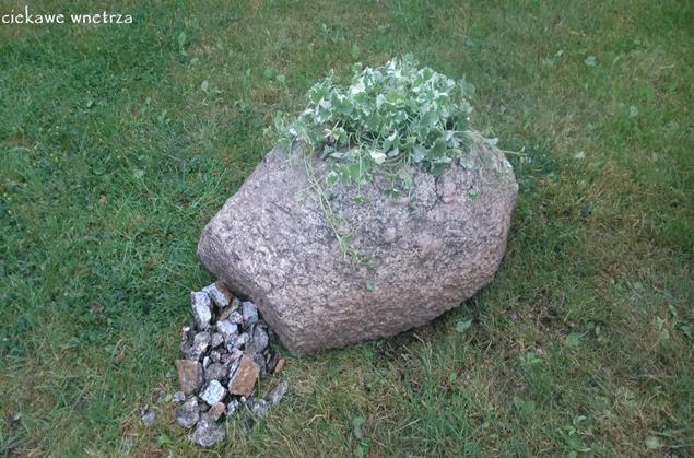 Doniczka Z Kamienia Ciekawe Wnętrza